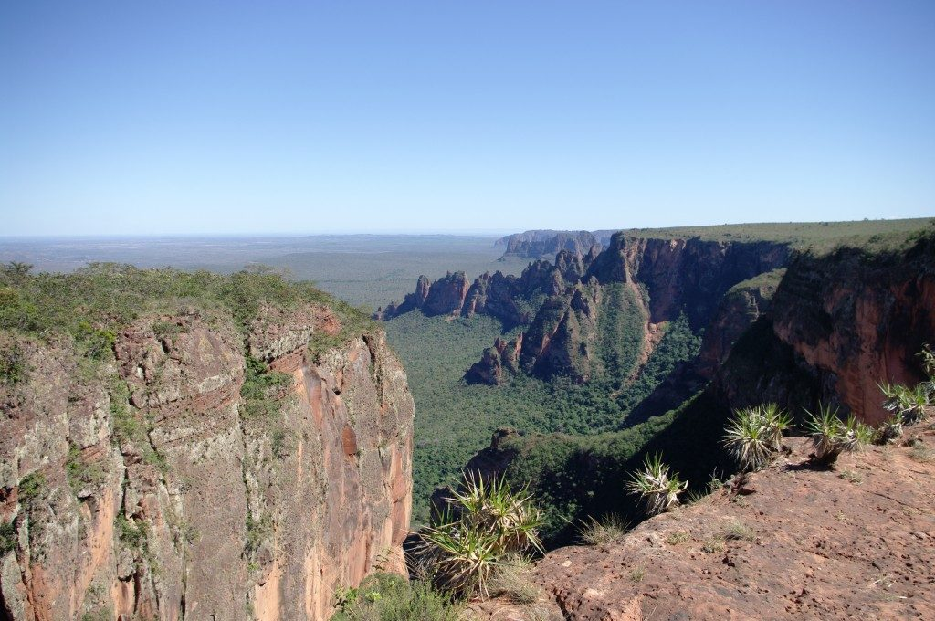 Wild Places in Brazil
